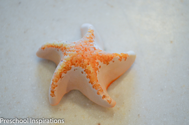 DIY Sea Stars ~ Preschool Inspirations-6