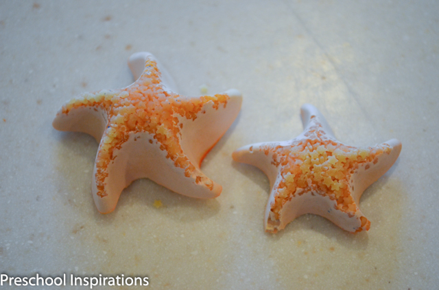 DIY Sea Stars ~ Preschool Inspirations-7