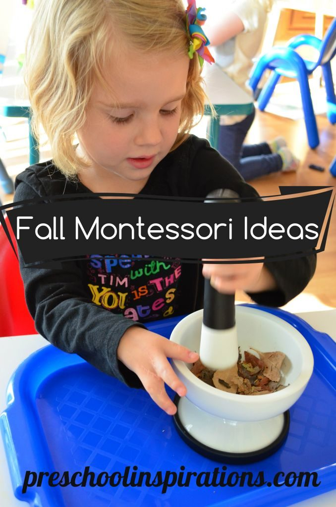 Fall Montessori Ideas by Preschool Inspirations #prek #preschool #fall #montessoriactivities #montessori #finemotor
