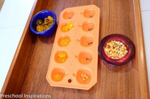 Fall Montessori Ideas by Preschool Inspirations-7