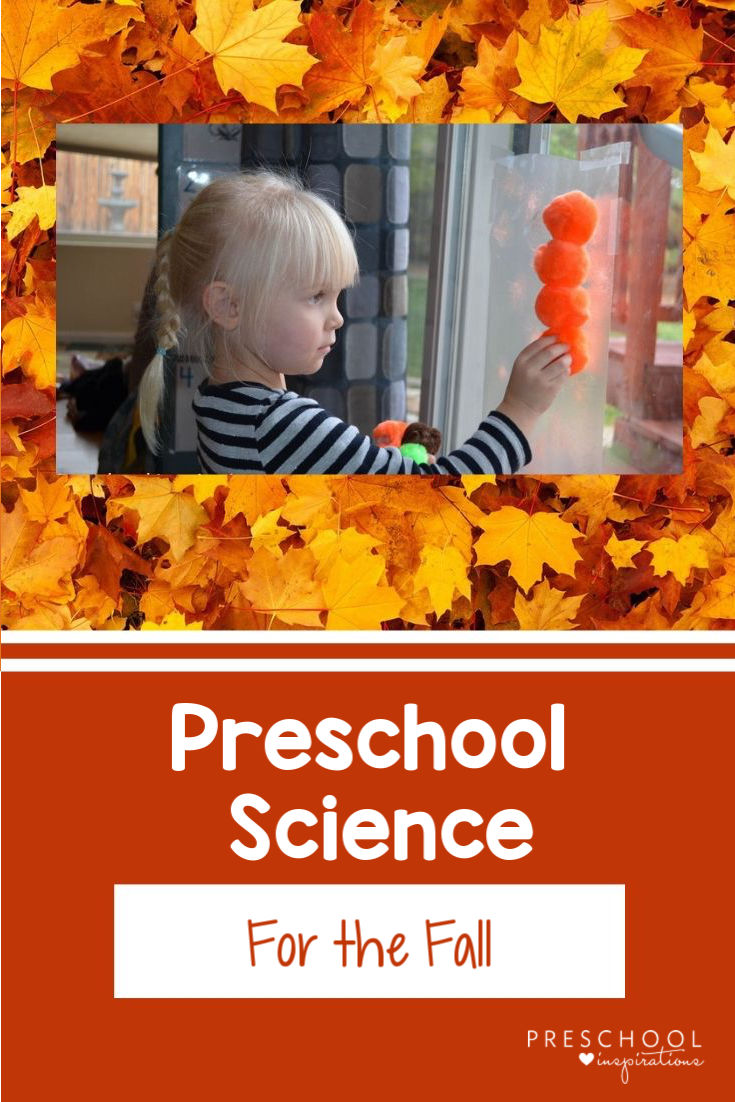 Preschool science ideas for the fall! Tips for how to set up your classroom science center for fall. Great ideas and science activities to do with pumpkins, fall leaves, bugs, and more. #preschool #prek #fall #preschoolscience