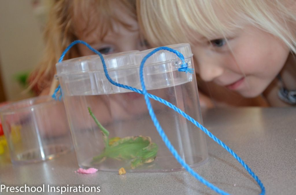 Setting up Science by Preschool Inspirations-15
