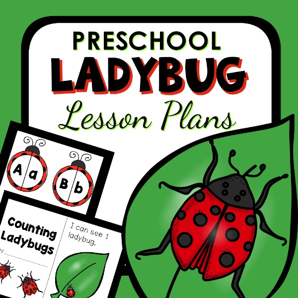 Preschool theme lesson plan