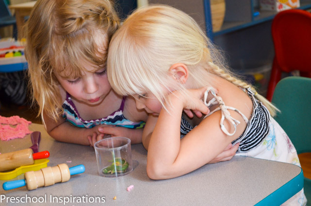 Your Preschool Questions Answered by Preschool Inspirations