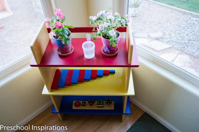 Having a plant area in the preschool classroom.