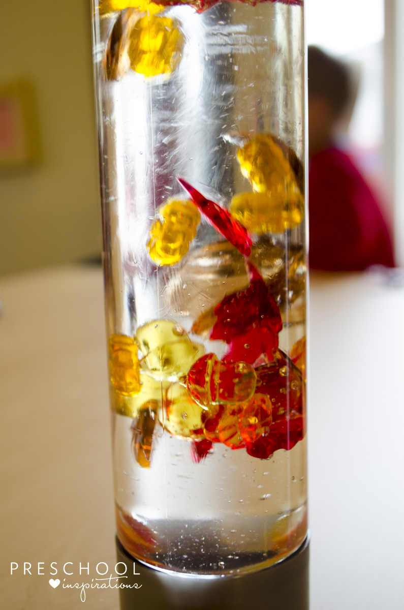 Make a fall discovery bottle with kids.