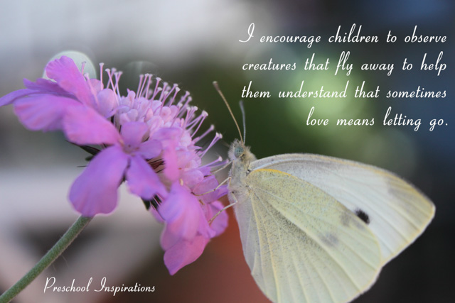 I teach children to observe creatures that fly away by Preschool Inspirations