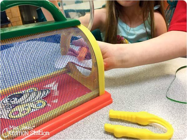 Bug Game for Preschoolers-5