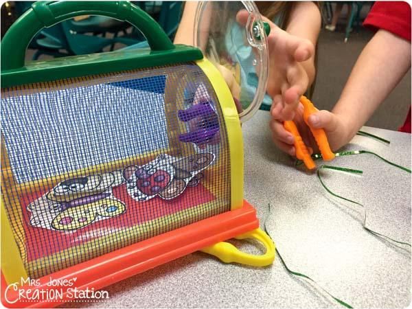 Bug Game for Preschoolers-7