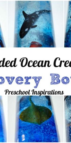 Suspended Ocean Creature Discovery Bottle