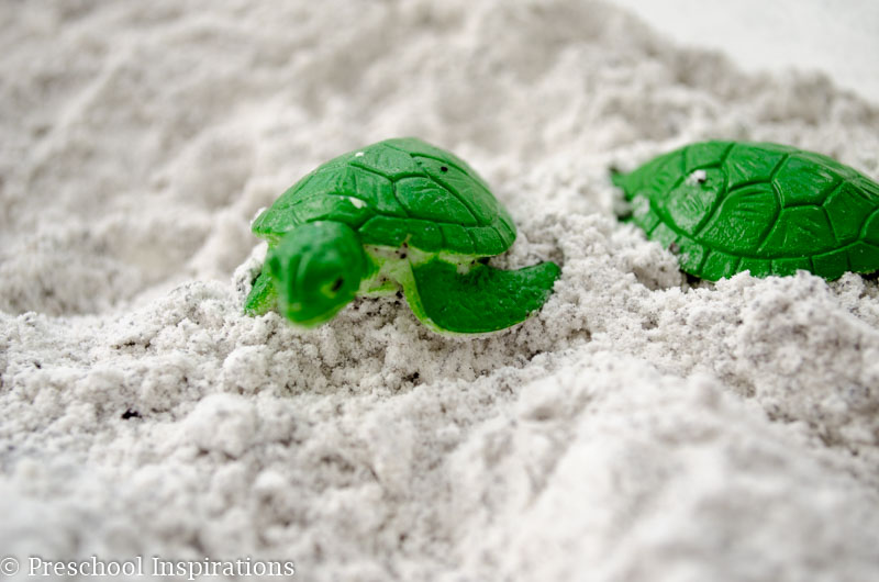 Feels Like Beach Sand Sensory Play - Preschool Inspirations-2