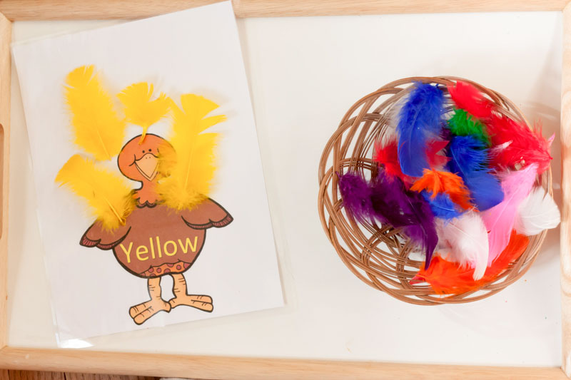 Turkey Color and Number Matching Montessori Inspired Activity by Preschool Inspirations-4