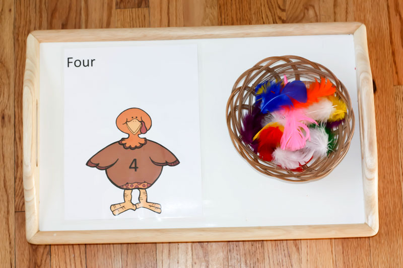 Turkey Color and Number Matching Montessori Inspired Activity by Preschool Inspirations-5