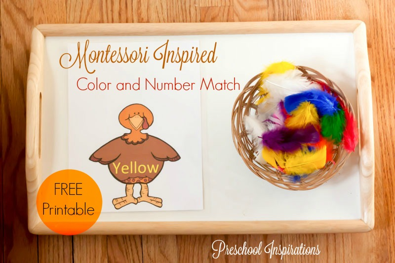 Turkey Color and Number Matching Montessori Inspired Activity with free printable by Preschool Inspirations