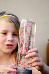 How to Make a Desert Flower Discovery Bottle