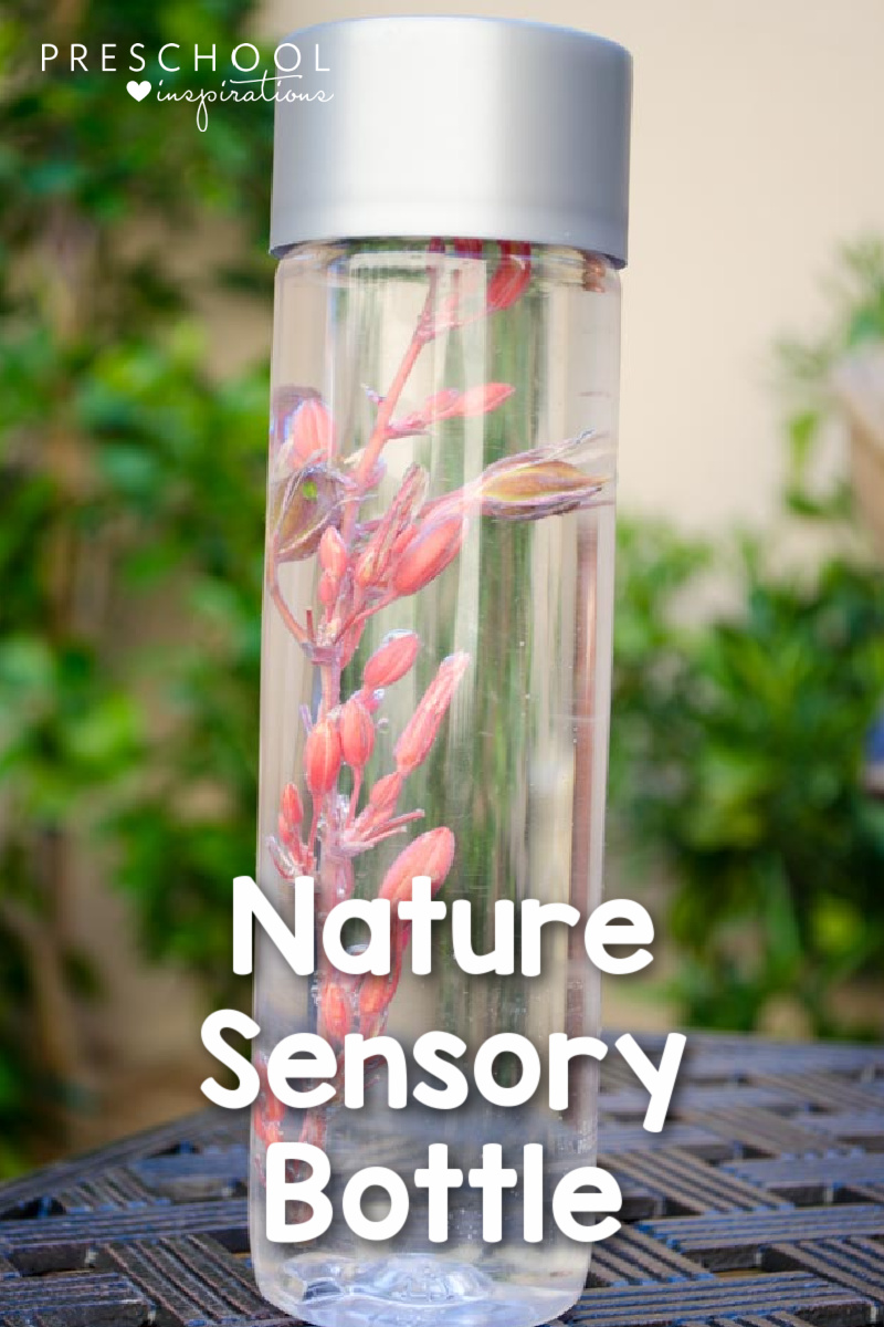 a pink desert flower in a sensory bottle with the text nature sensory bottle