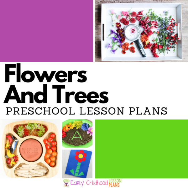 cover image for Preschool Lesson Plans Flowers and Trees