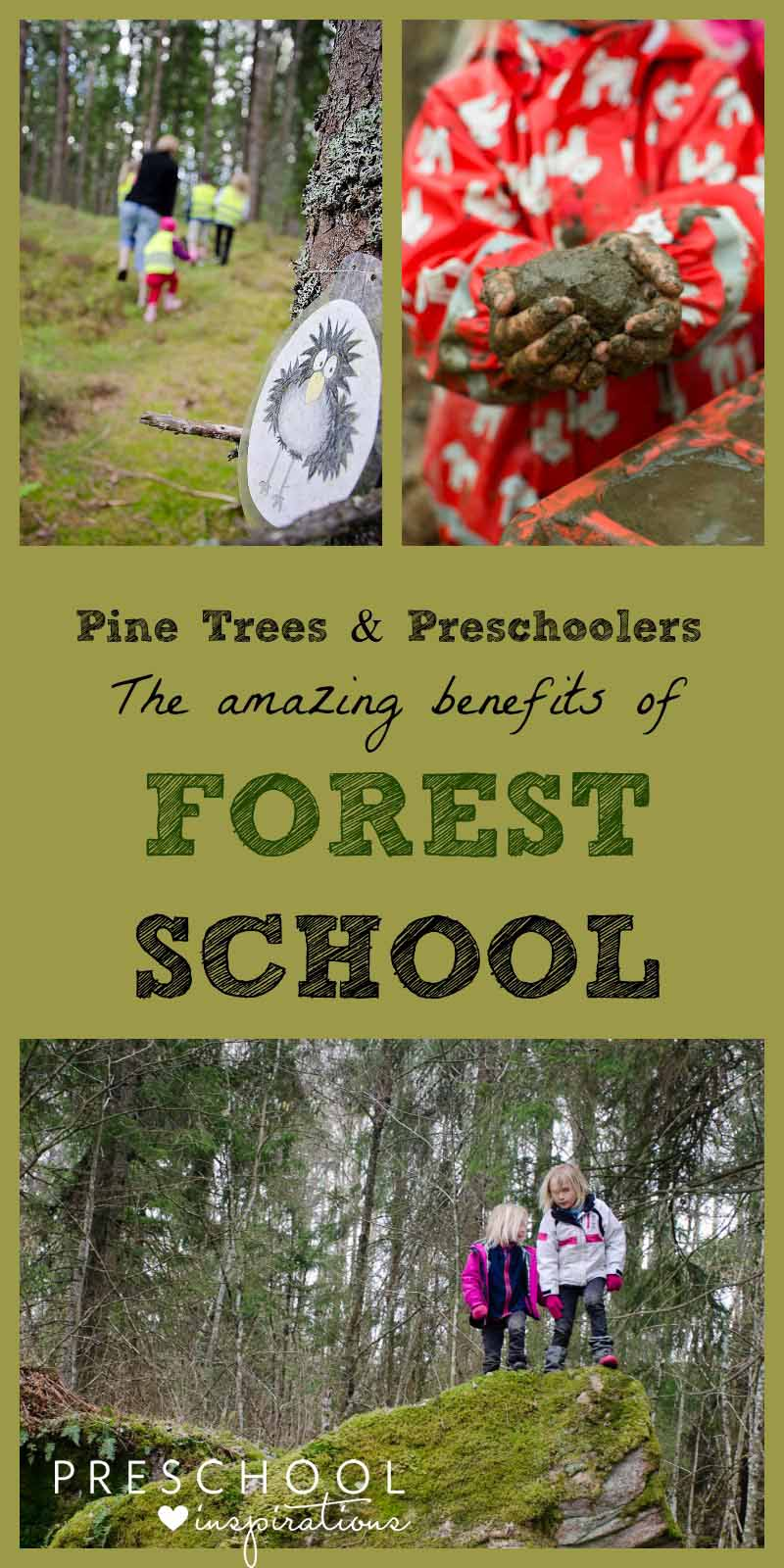 Pine Trees and Preschoolers. The Amazing Benefits of Forest School. The Scandinavian approach to outdoor learning and play is getting popular in the U.S. #preschool #prek #preschoolideas #preschoolplanning #forestschool #outdoorplay #outdoorkids
