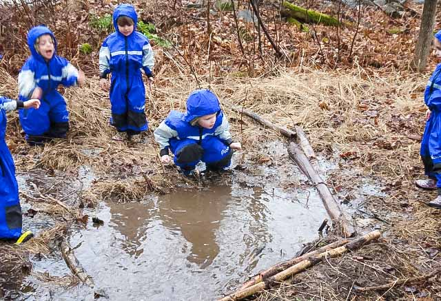 Do children learn through play? Find out the amazing benefits of forest schools and nature schools.