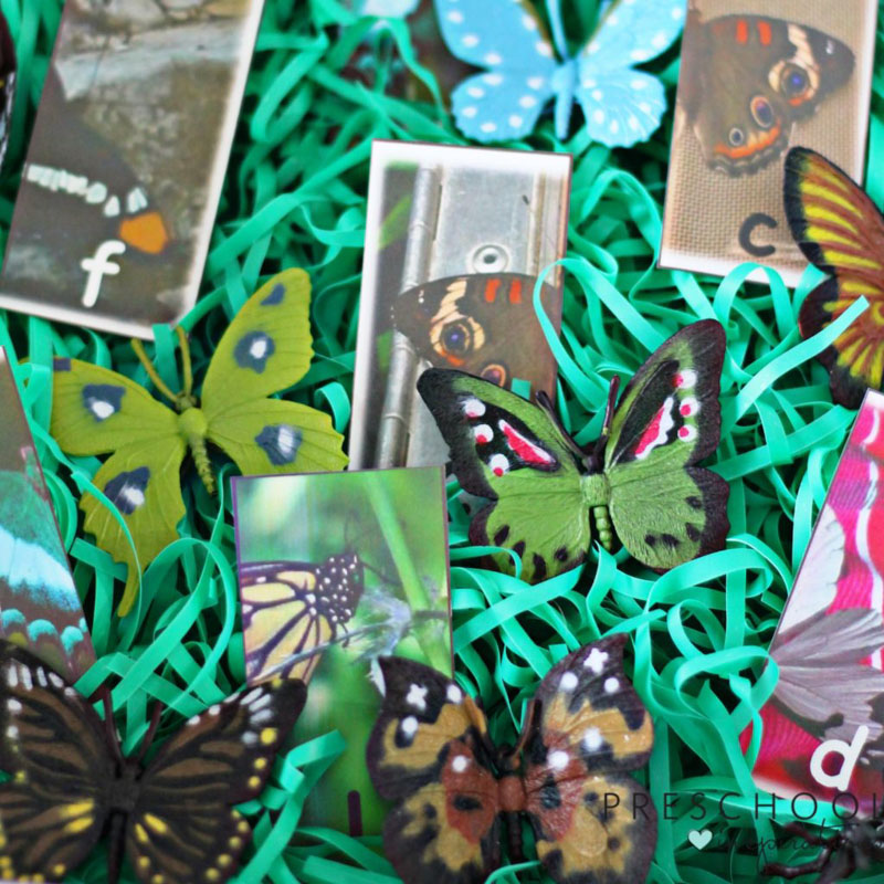 Match butterflies and letters with this butterfly alphabet match sensory bin