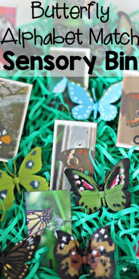 Butterfly Alphabet Match Sensory Bin