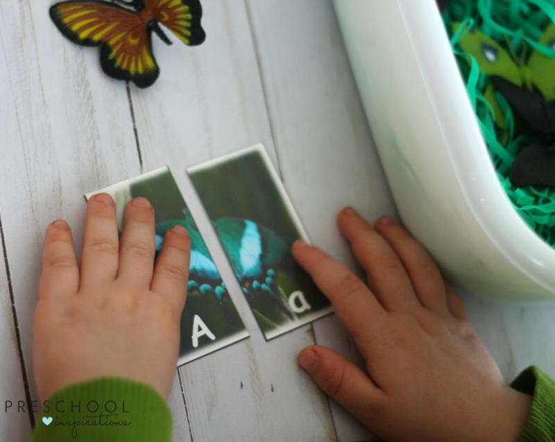 Butterfly Alphabet Match Sensory Bin play for kids