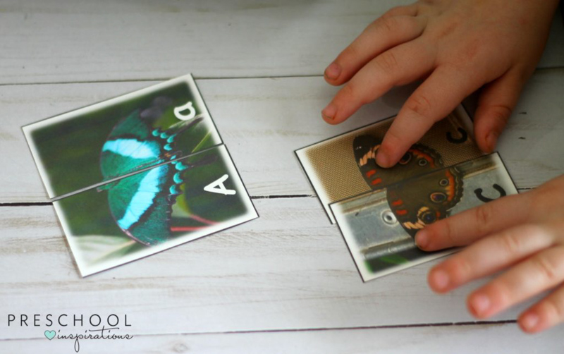 What a fun way to learn about butterflies and letters - Butterfly Alphabet Match Sensory Bin