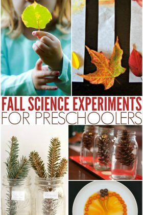 Get some great fall science activities and science experiments.