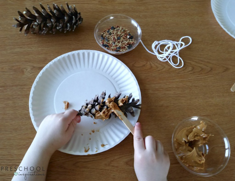 Spreading peanut butter to make pine cone bird feeders