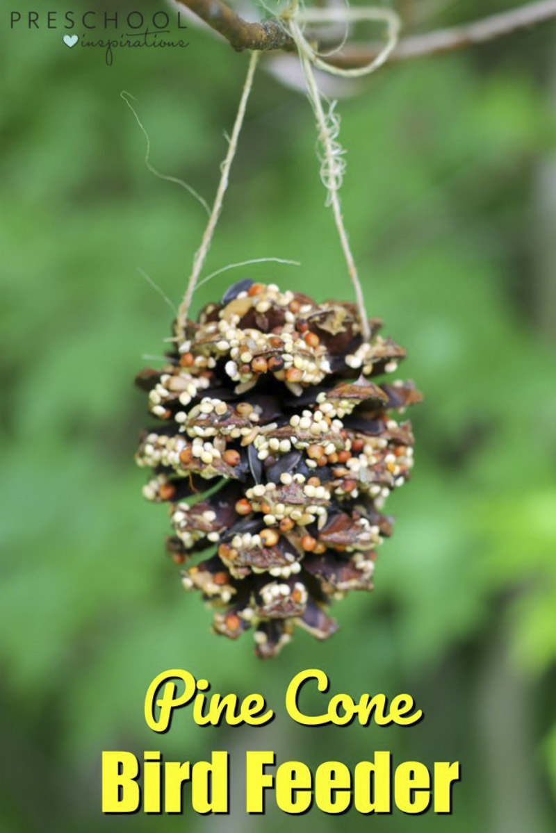 Making pine cone bird feeders with kids