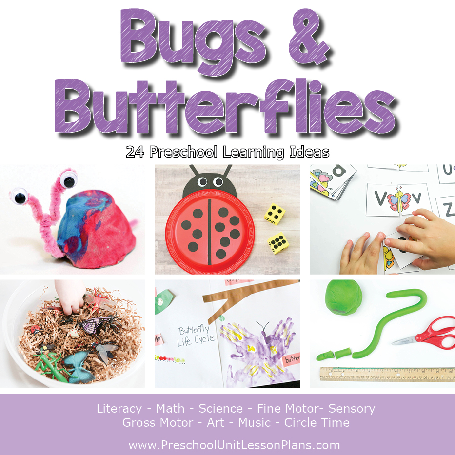 bugs and butterflies lesson plans