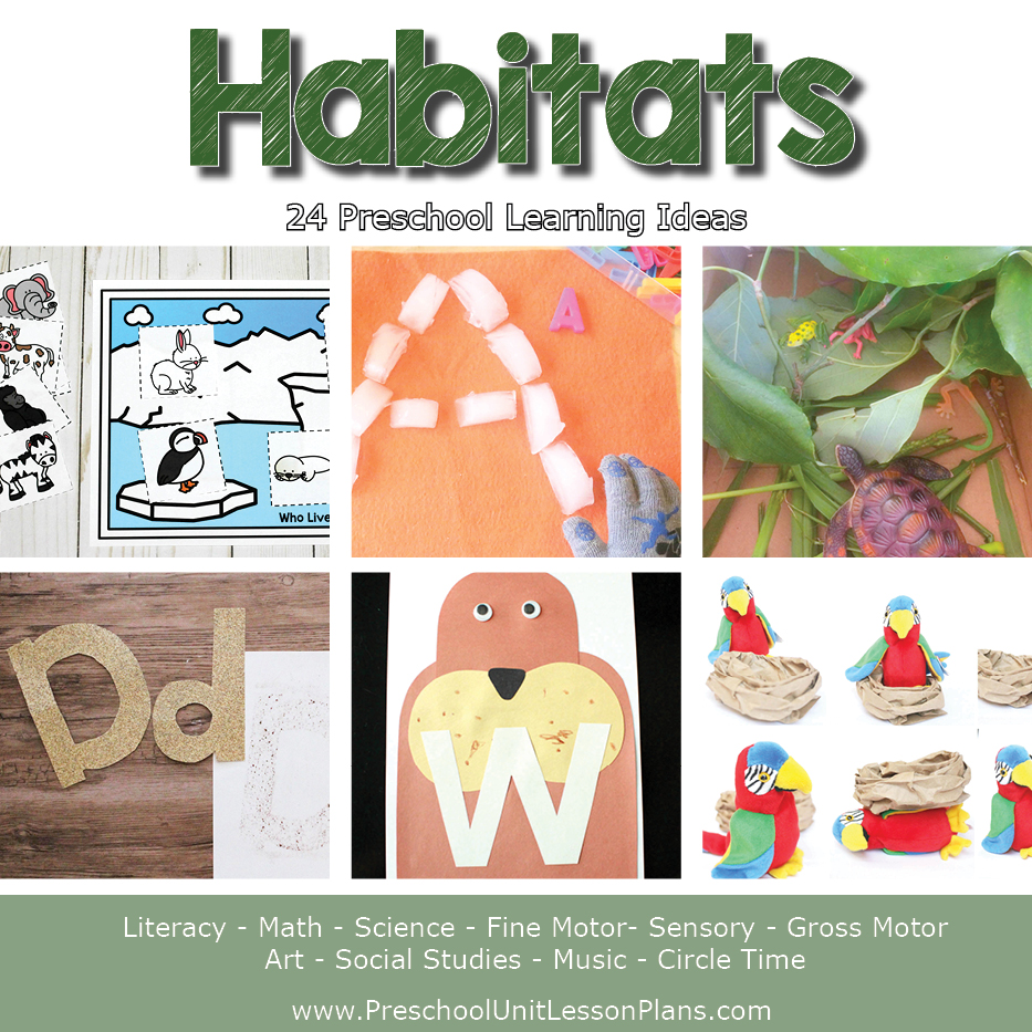 habitats lesson plan for preschool