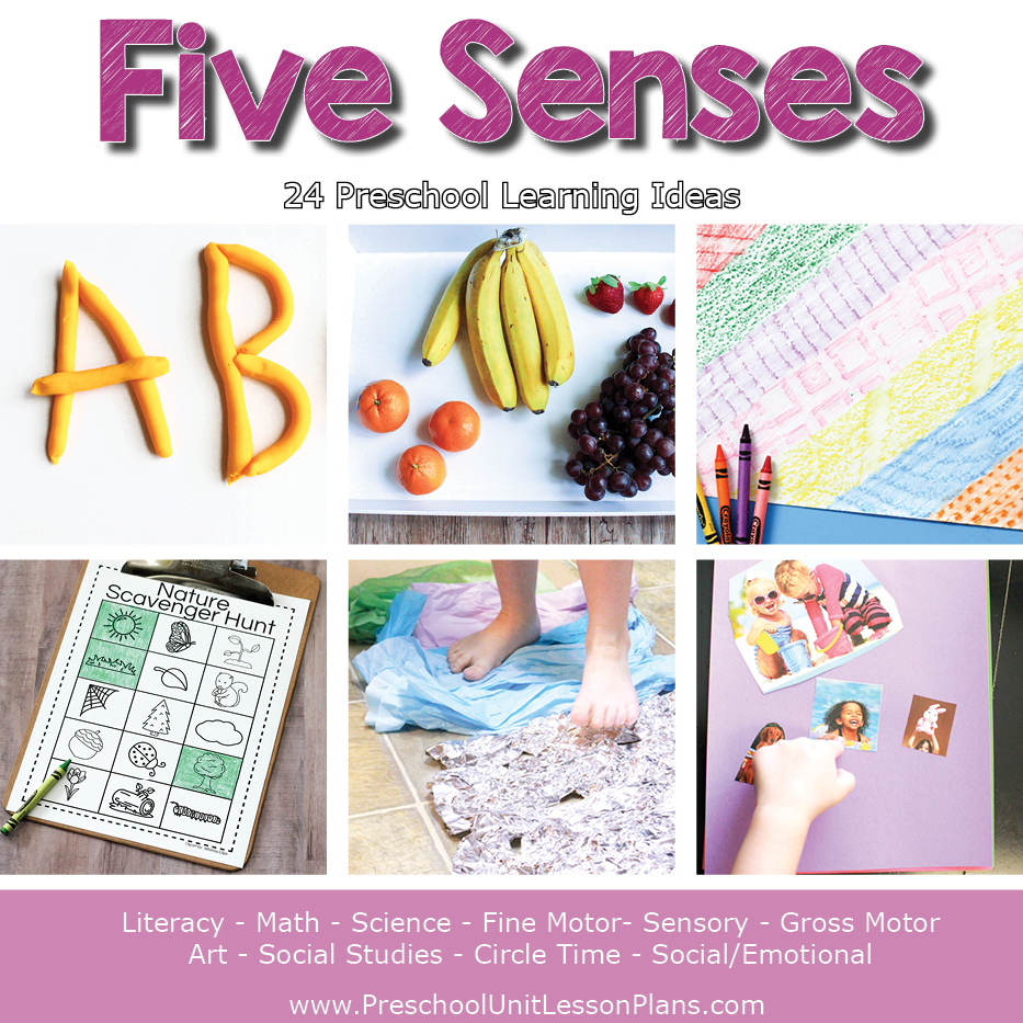 Five senses theme for preschool