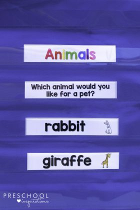 Question of the day for circle time with preschool or kindergarten