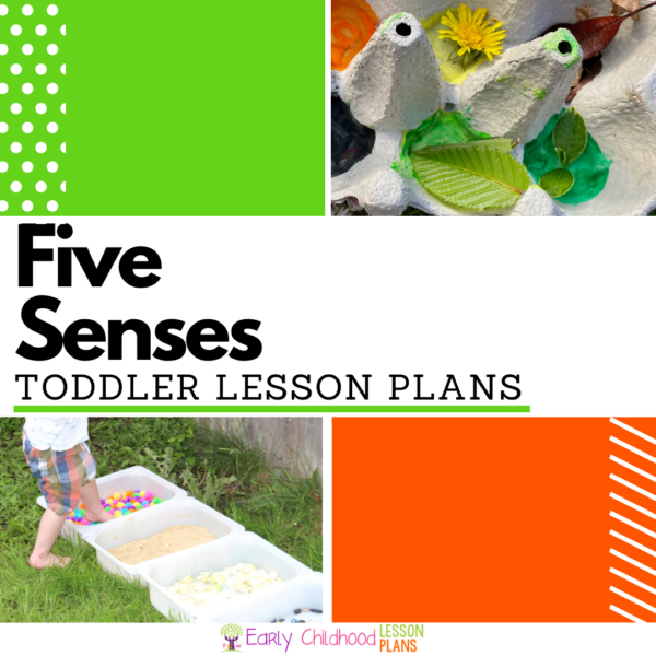 cover image for Toddler Five Senses Lesson Plan