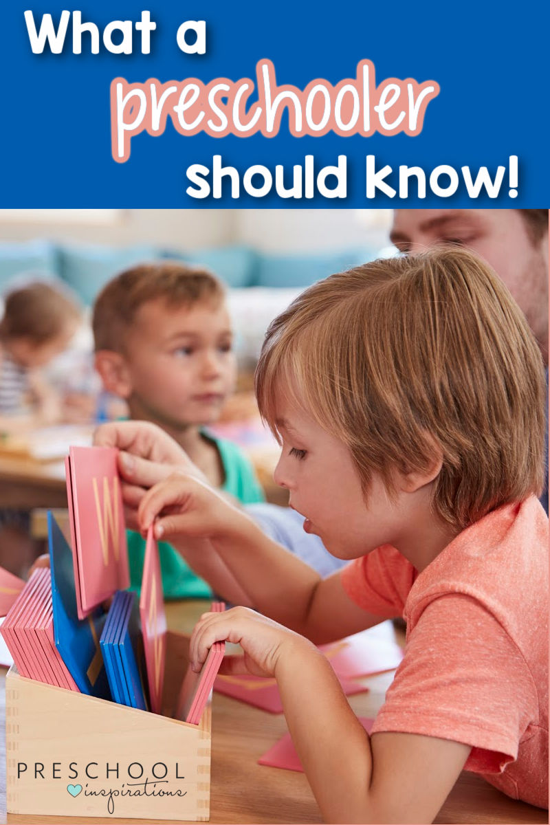 a preschool boy looking through alphabet cards and the text 'what a preschooler should know'
